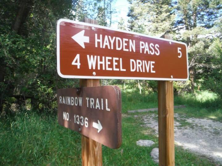 Hayden 2